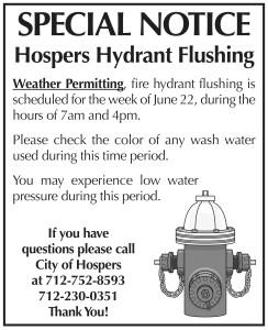 Hydrant Flushing 2020